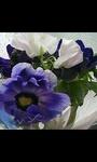 image/2009-03-28T17:51:232